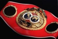 http://www.bokser.org/content/2008/10/25/141507/ibf.jpg