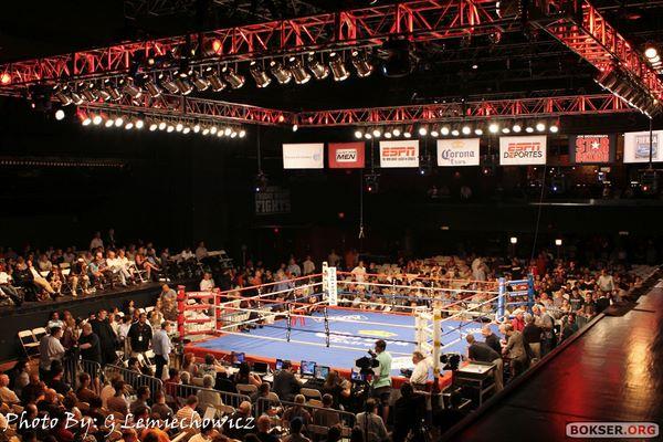 Polish Boxing updates Wolak005