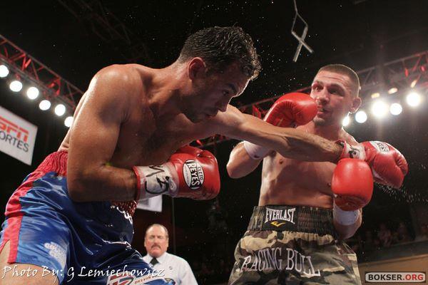 Polish Boxing updates Wolak181