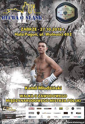 II Bitwa o Śląsk