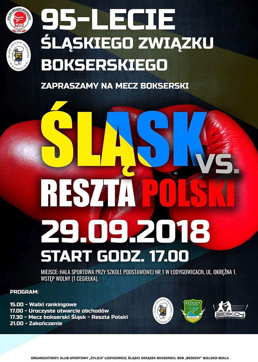 Mecz kadry Śląska przeciw reszcie Polski w Łodygowicach