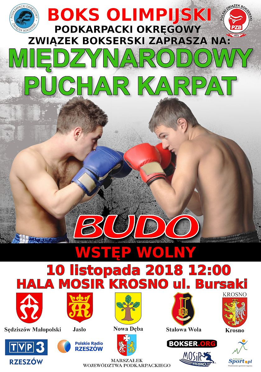 Międzynarodowy Puchar Karpat - finał w Krośnie