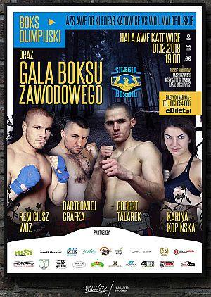 Silesia Boxing
